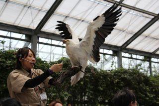 神戸どうぶつ王国 神戸で1番動物との距離が近いテーマパーク
