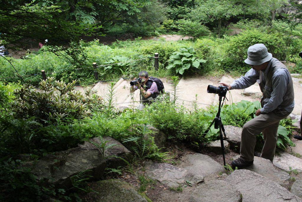 高山植物園で写真撮影