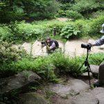 六甲高山植物園 秋のフォトセミナーとフォトコンテスト受付中!