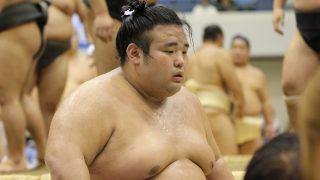 兵庫県にゆかりのある相撲力士まとめ