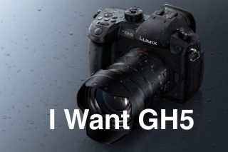 Canon一眼レフユーザーの私がPanasonic GH5を本気で欲しい9つの理由