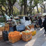 神戸ファーマーズマーケット スナップ