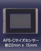 APS-Cサイズセンサー 約22mm×15mm