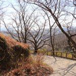 保久良神社までの坂道