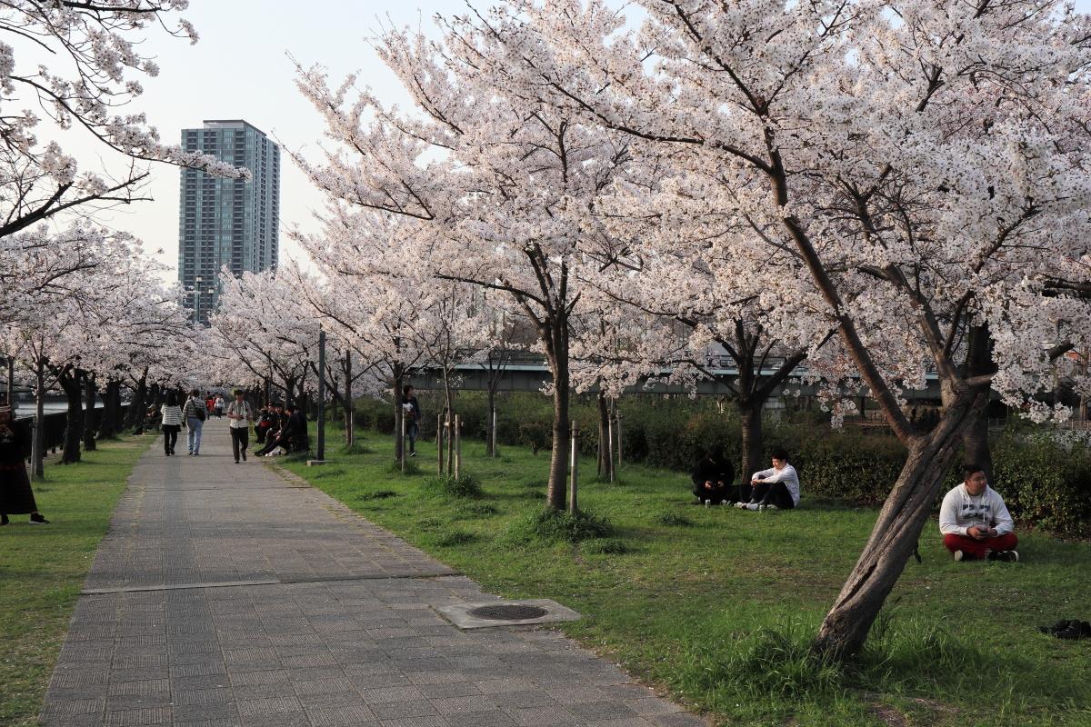 大阪 桜ノ宮