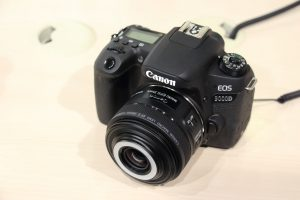 EF-S 35mm F2.8 マクロ IS STM