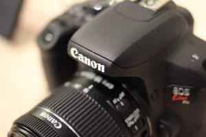 EF35mm F2 IS USMで接写