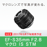 EF-S35mm F2.8 マクロ IS STM