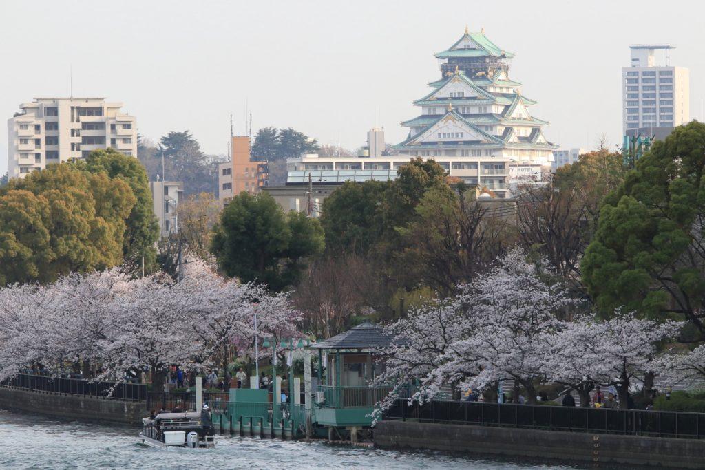大阪城と桜 桜ノ宮にて