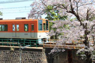 写真で振り返る神戸2017年4月