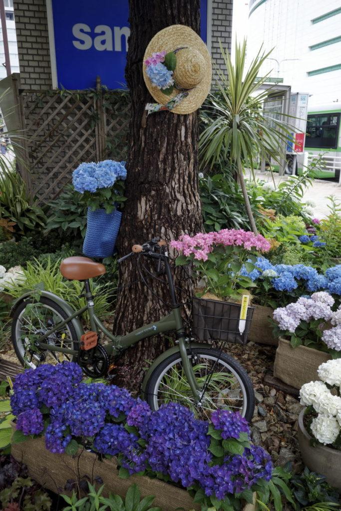 神戸三宮 フラワーロードの紫陽花