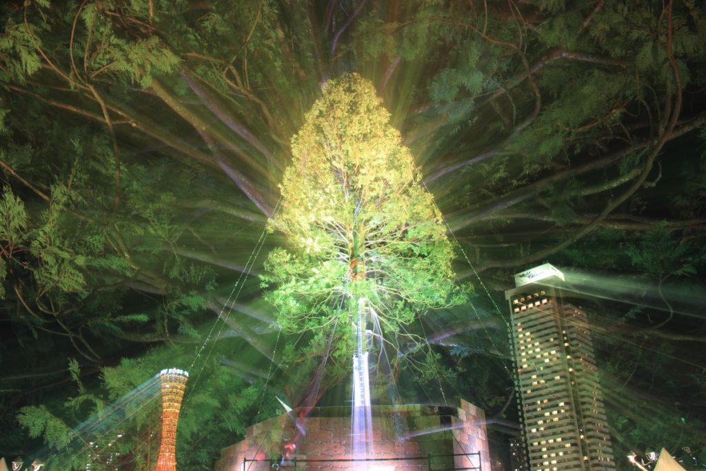 躍動感あふれる世界一のクリスマスツリー
