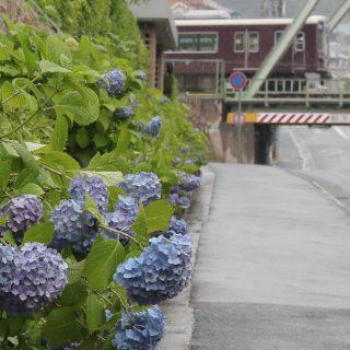 雨の日こそ写真撮影に出かけると楽しい!雨の日フォトを魅力的に撮る方法