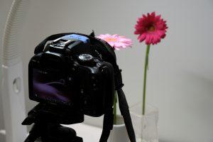 花としずくフォトのセッティング