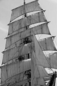 帆船フェスティバル 帆 モノクロ