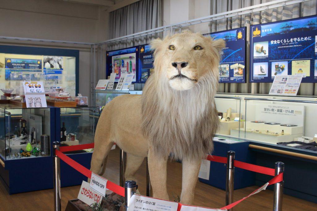 神戸税関後方展示室