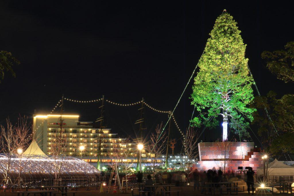 世界一のクリスマスツリー 背景には海王丸のイルミネーション