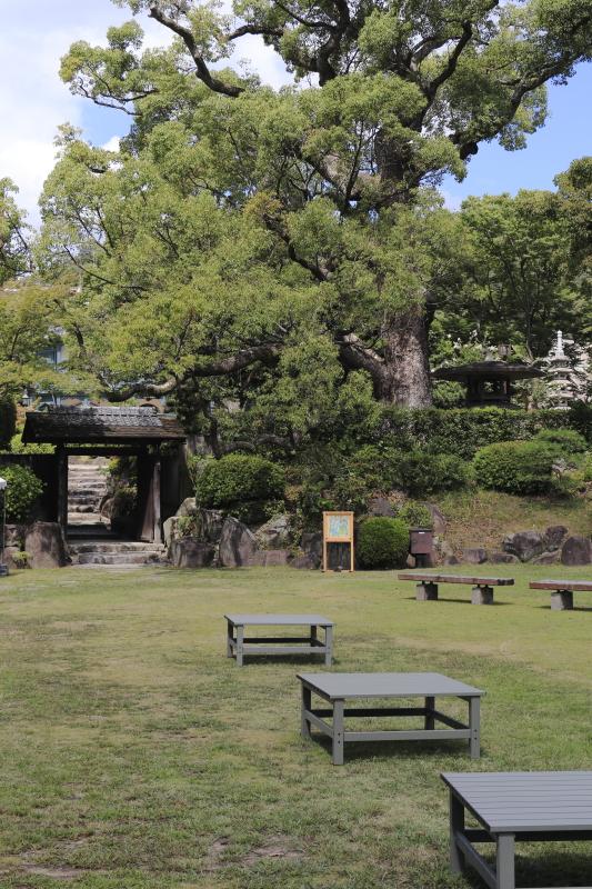 相楽園 中庭