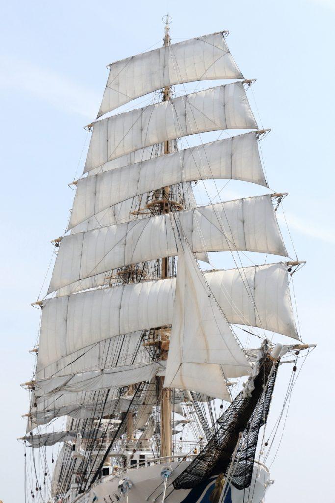 帆を張る海王丸 神戸でのセイルドリル