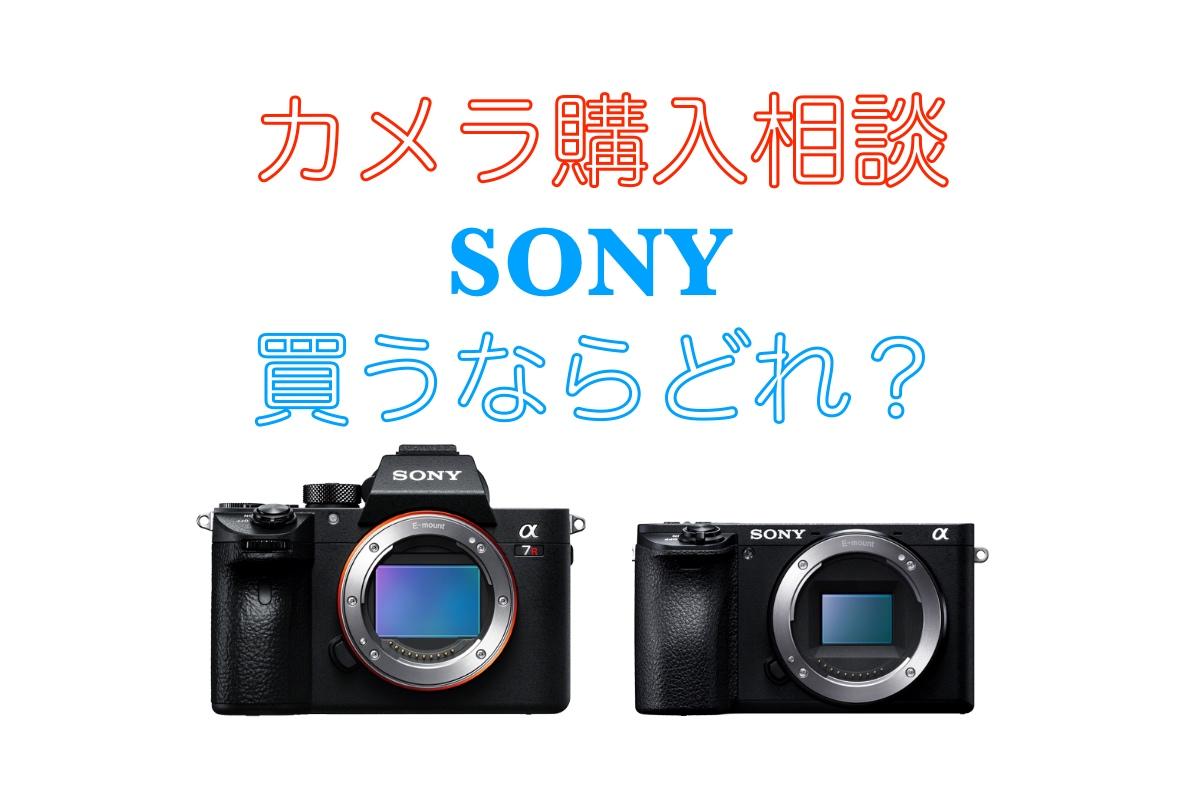 ソニーのカメラどれがおすすめ?