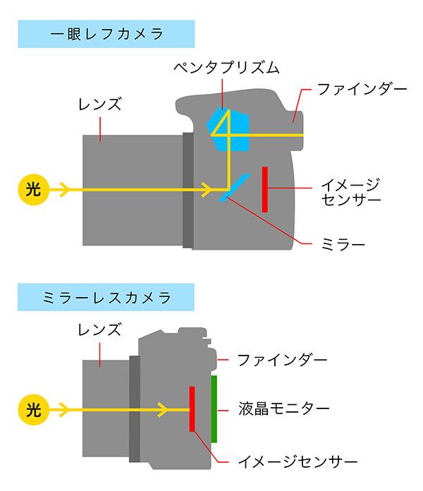 一眼レフとミラーレスの構造の違い