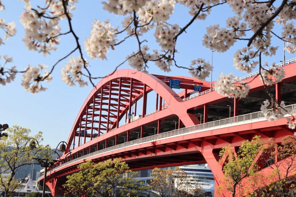 ポーアイ北公園の桜と神戸大橋