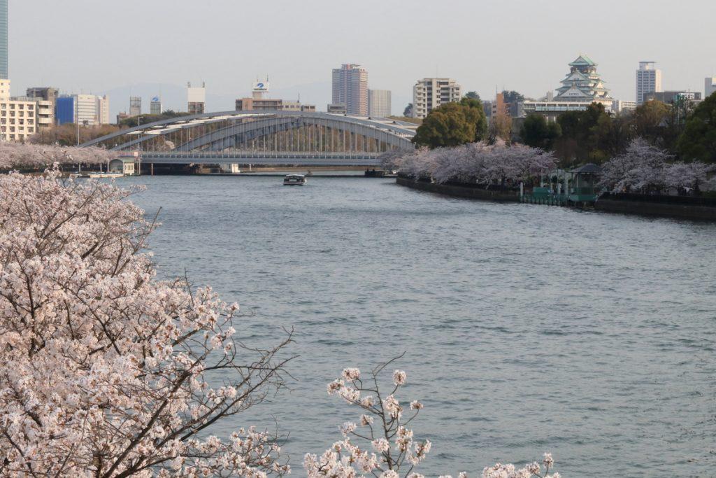 大阪桜ノ宮