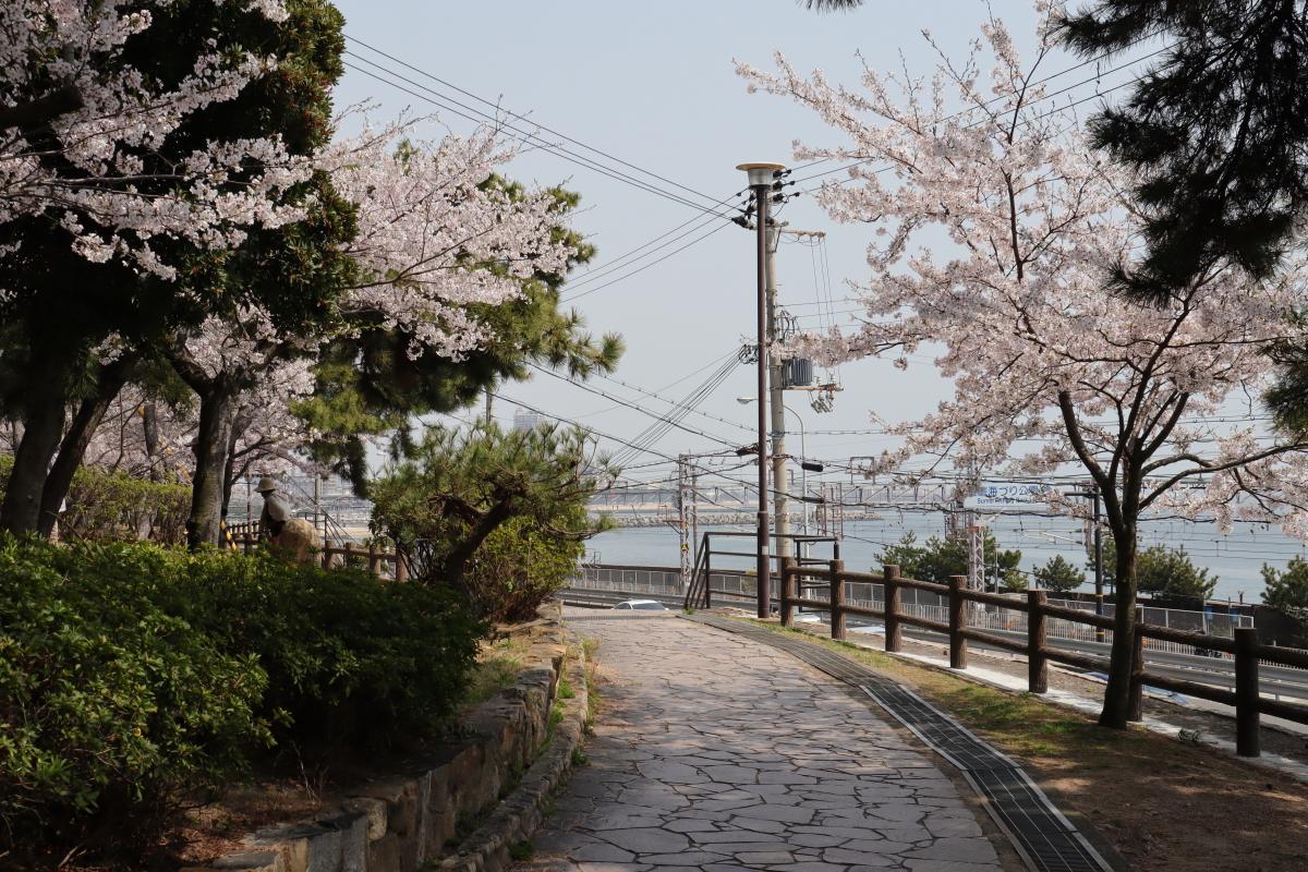 2018年4月2日の須磨浦公園