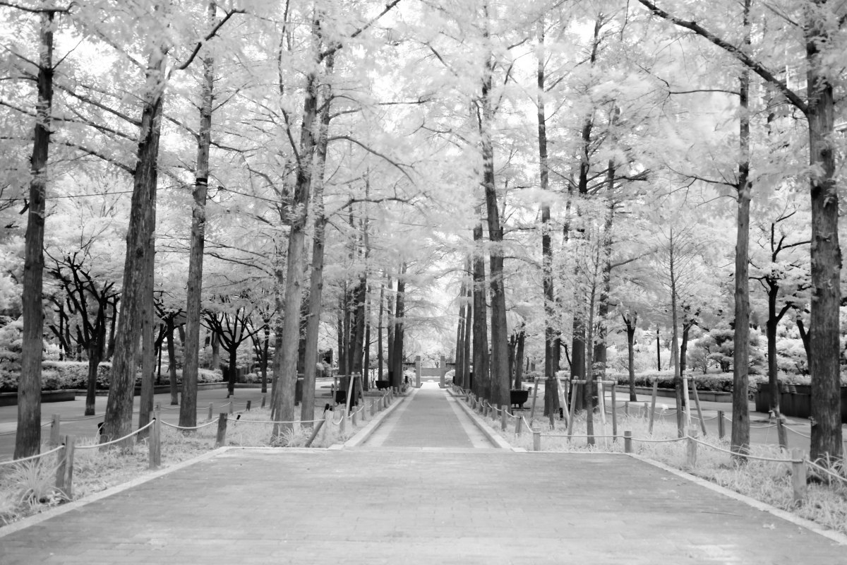 三宮 東遊園地 モノクロ写真