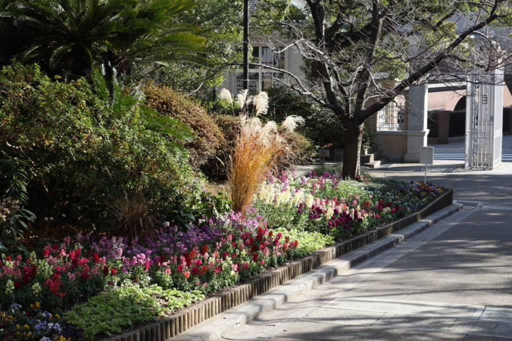 兵庫県公館前の花壇
