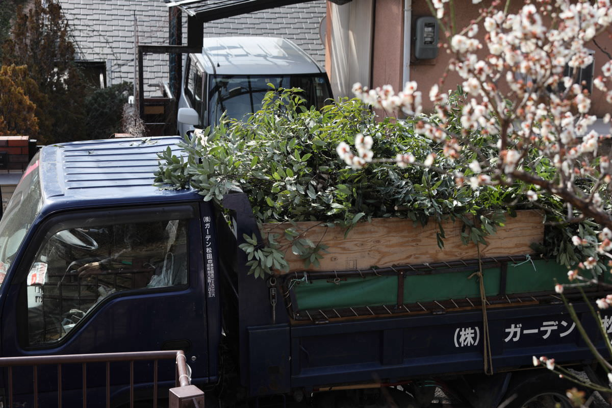 岡本梅林公園 整備に来た業者のトラック