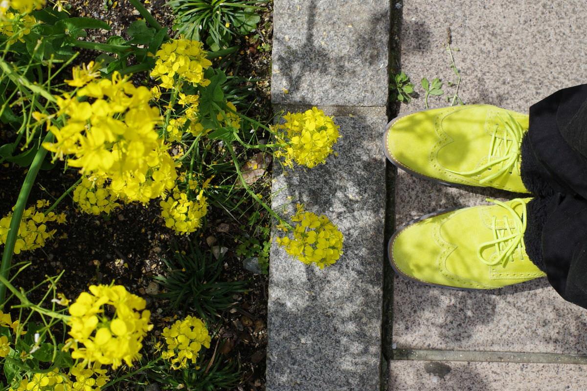 リコーGR3作例写真 菜の花と黄色い靴