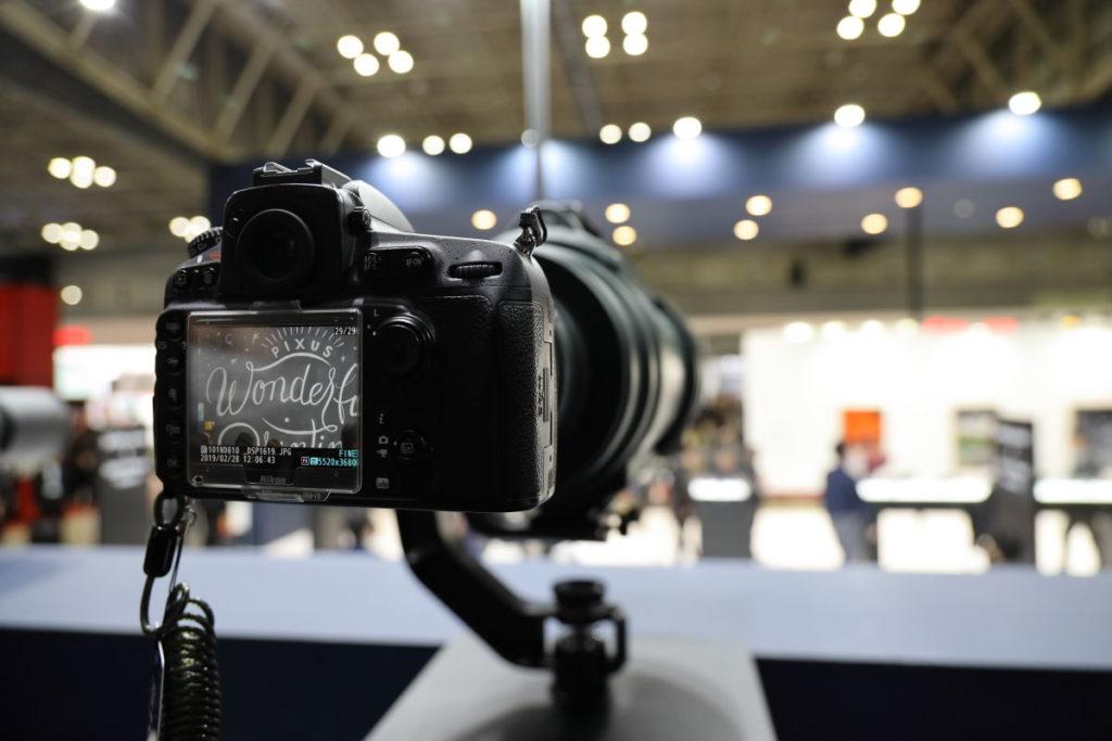 シグマ の望遠レンズ「APO 200-500mm F2.8 / 400-1000mm F5.6 EX DG [200-500mm/F2.8」で試写