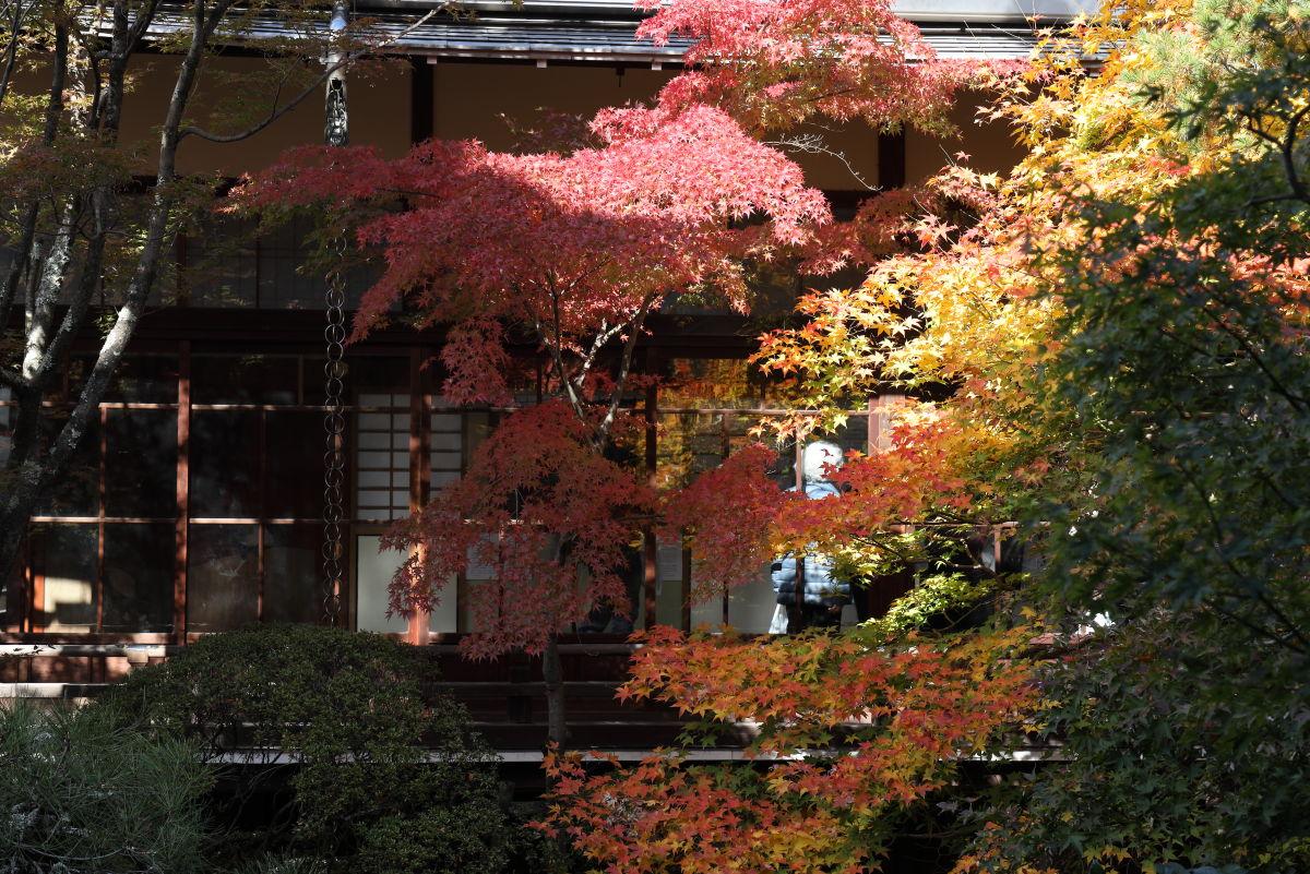 永観堂の紅葉 京都