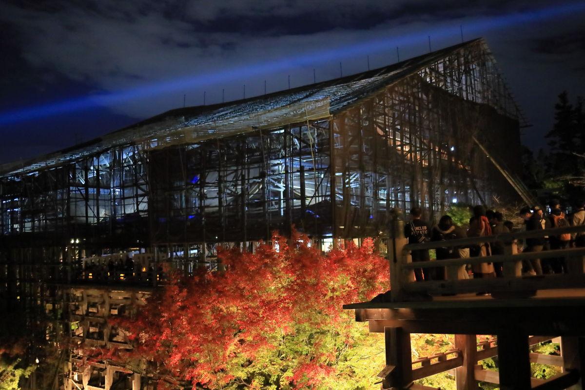 京都 清水寺 ライトアップ 工事中