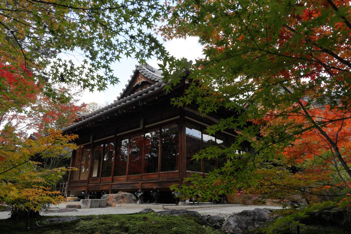 京都 南禅寺の天授庵 紅葉