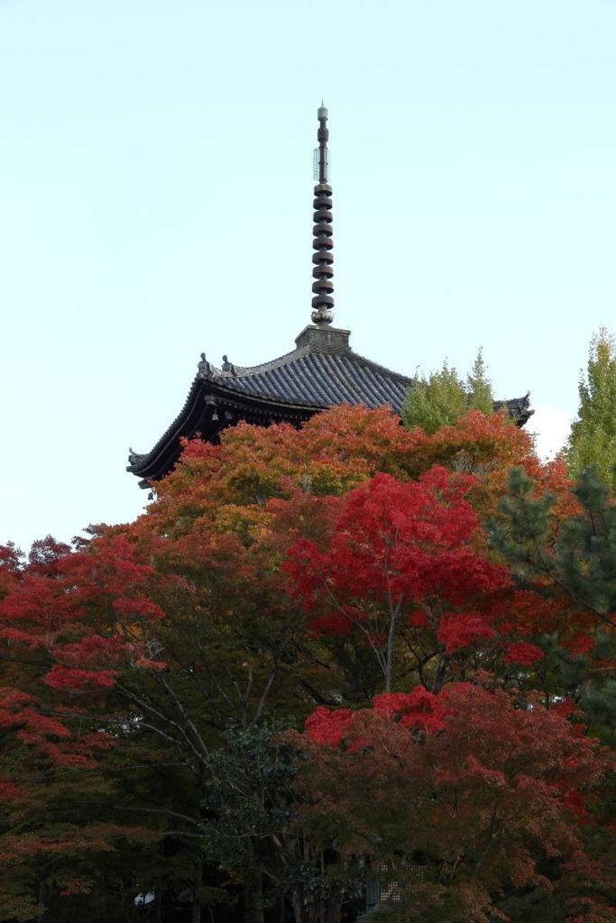 京都 真如堂の塔と紅葉