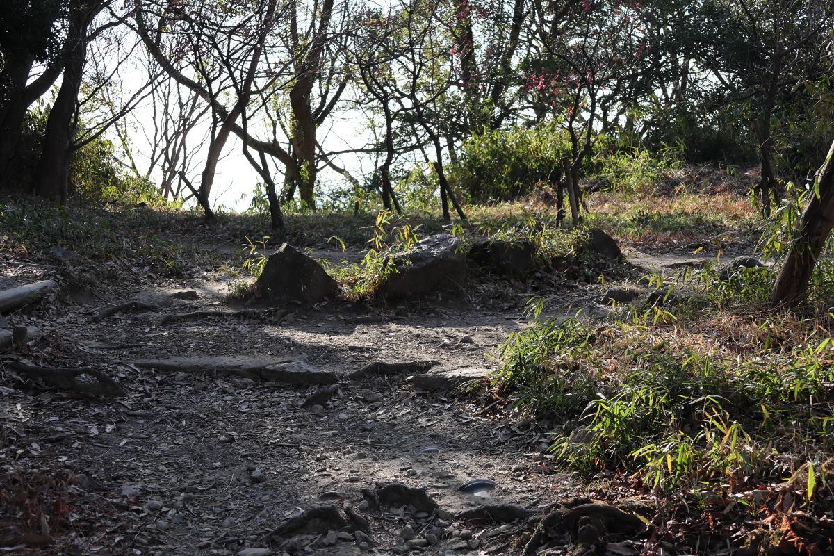保久良神社近くの山道