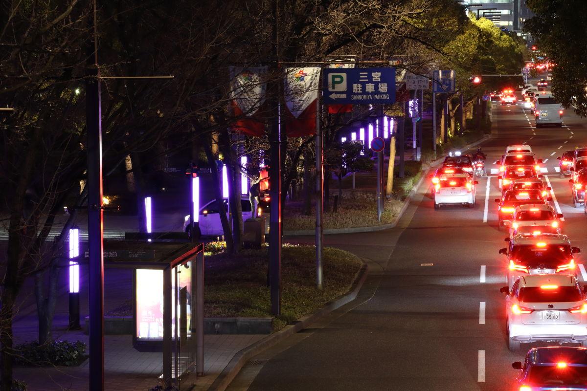紫色にライトアップされる神戸市役所前フラワーロード