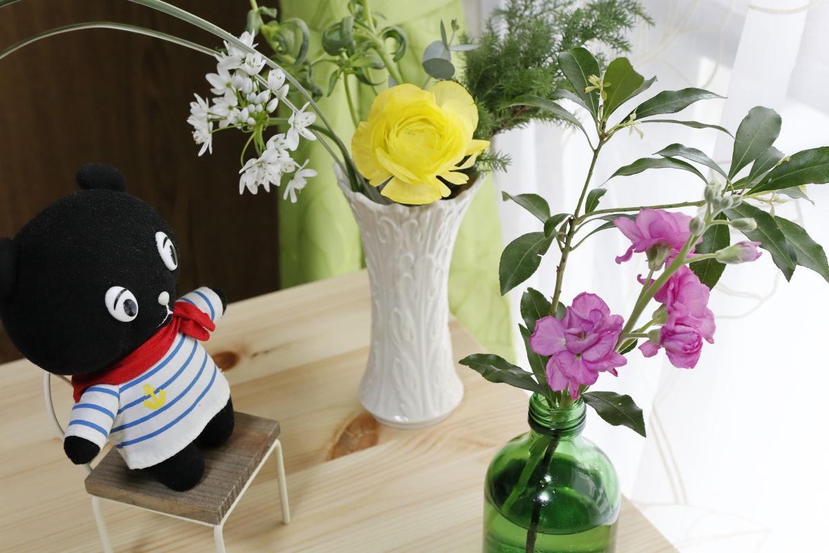 自宅で花見を楽しむコーベアー