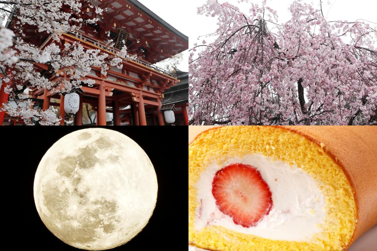 写真と動画で振り返る神戸2020年4月