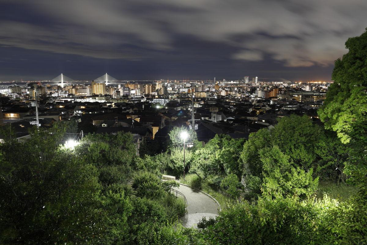 岡本梅林公園から見下ろす神戸の夜景