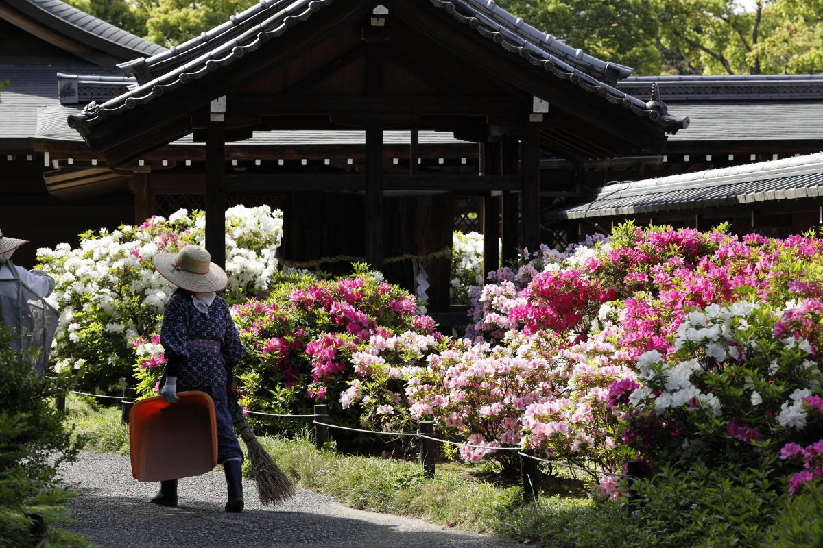 春の京都・城南宮 つつじ