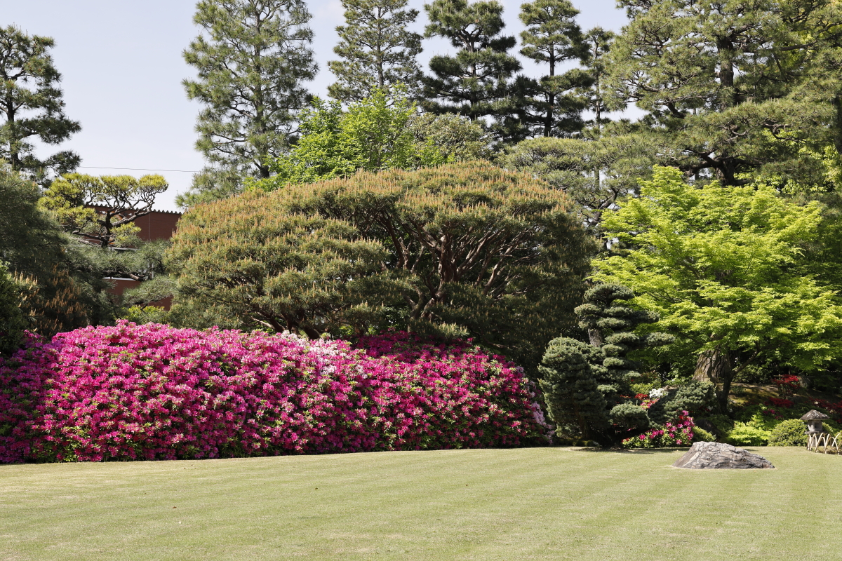春の京都・城南宮 神宛の日本庭園 つつじ