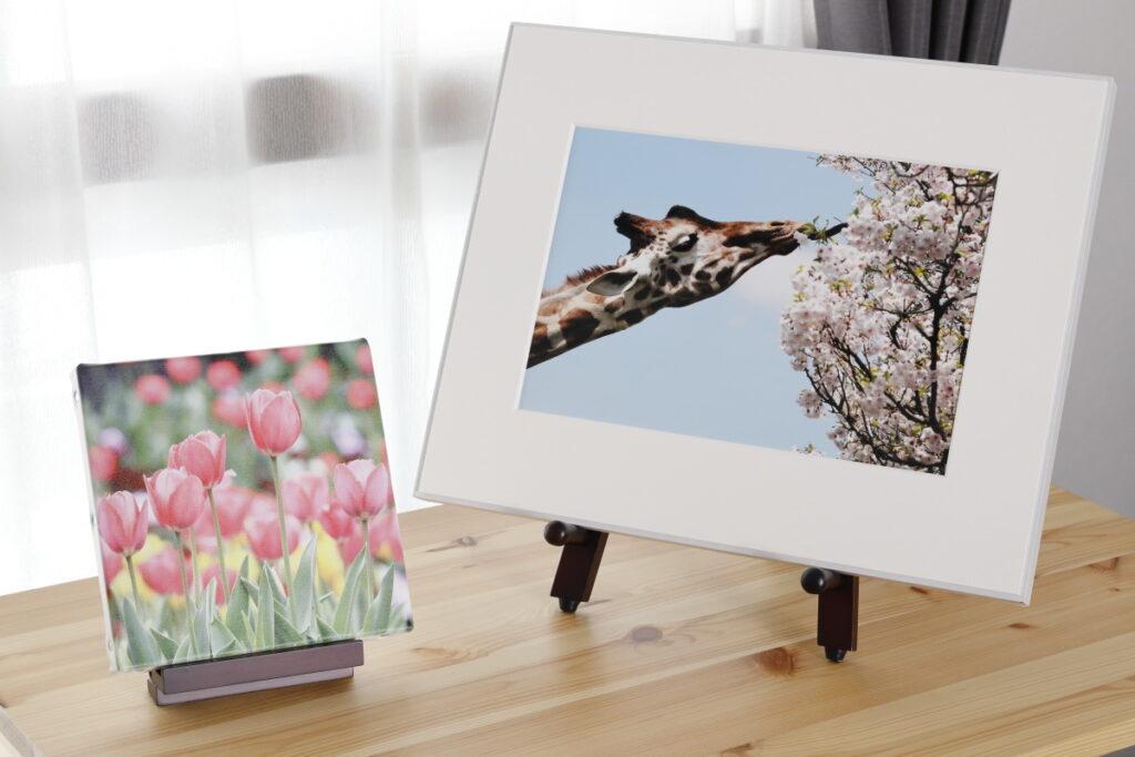ウォールデコ 富士フイルム WALL DECOR FujiFilm 写真印刷 写真飾る